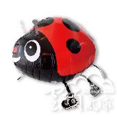 散步紅小瓢蟲