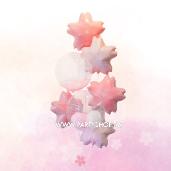櫻花球束<可宅配>