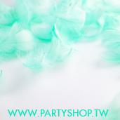 短羽毛-淺藍綠/100根[T4]
