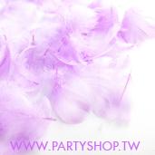 短羽毛-淺紫/100根[T4]