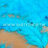土耳其藍-羽毛/100根[T8]