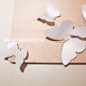 白-蝴蝶牆貼/12入[T8]